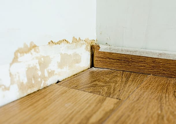 mokrý obklad vlhké zdi